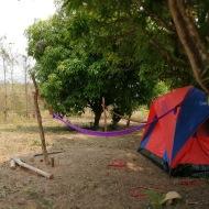 Tent and hammocks