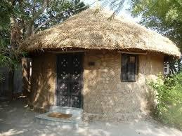 bambooearth
