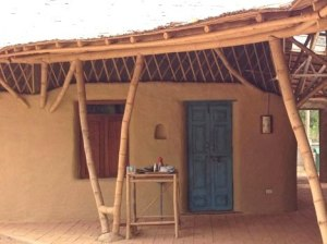 bamboo-home3