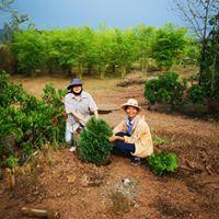 Fon and Charlotte gardening