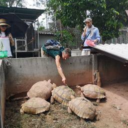 Feeding the turtles with volunteers